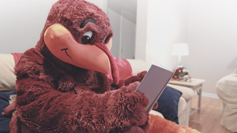 Hokie Bird being a Hibernating Hokie